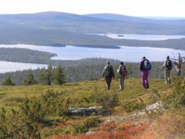 [SUMMER] HILLS OF LAPLAND